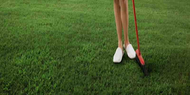 Maintaining your MazeGrass Lawn